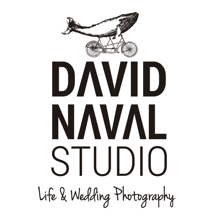 David Naval Studio